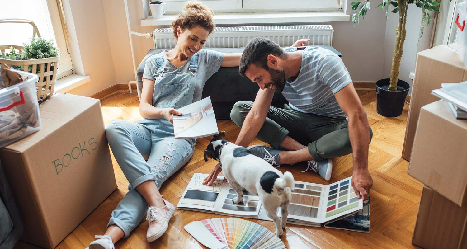 Moving house with a dog:checklist